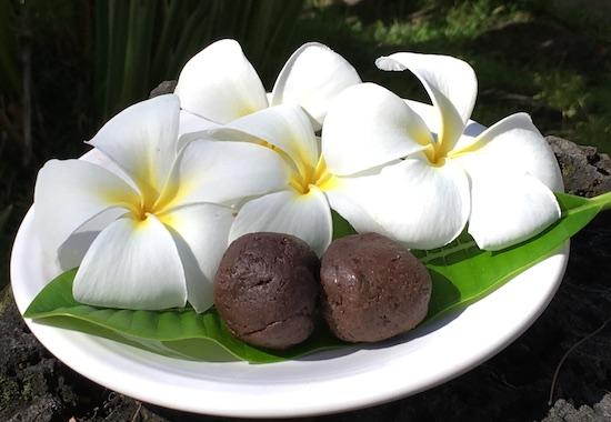 Chocolate Sunbutter Bites (Allergen Free)