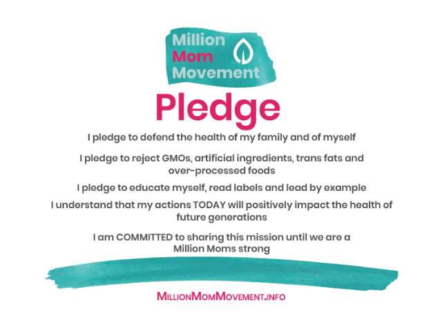Sign the Million Mom Movement Petition!